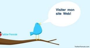 votre-site-web-sur-twitter