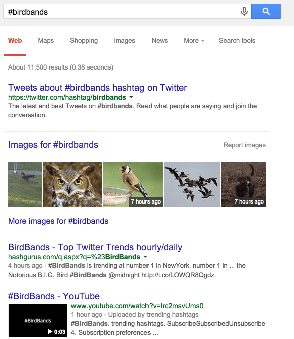 hastag-bird-bands-google-results